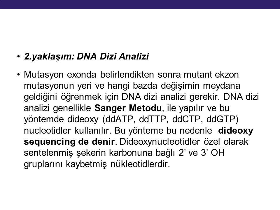 2.yaklaşım: DNA Dizi Analizi