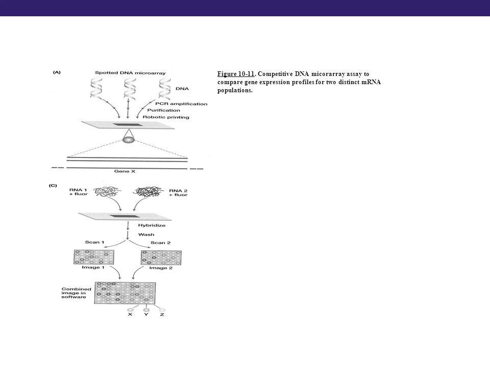 Figure 10-11.