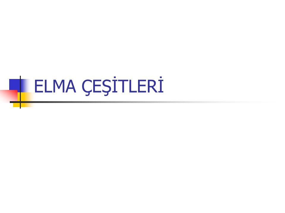 ELMA ÇEŞİTLERİ