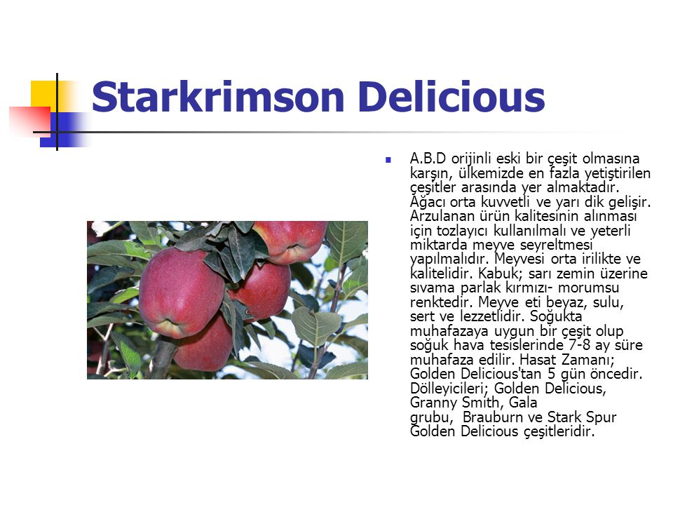 Starkrimson Delicious