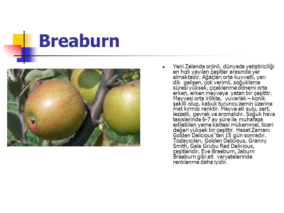 Breaburn