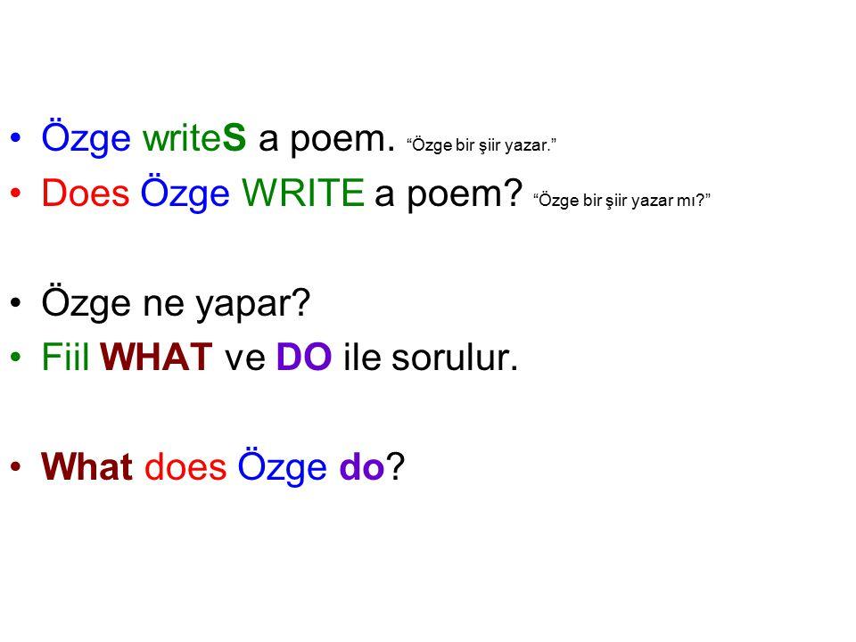 Özge writeS a poem. Özge bir şiir yazar.