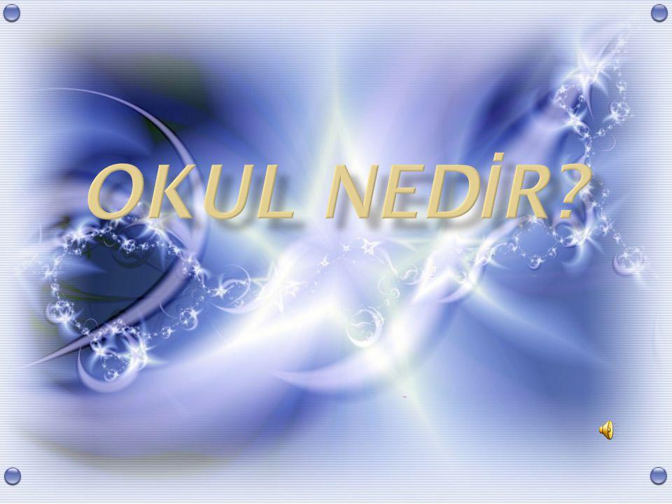 OKUL NEDİR
