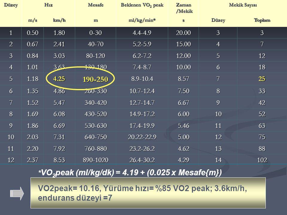 VO2peak= 10.16, Yürüme hızı= %85 VO2 peak; 3.6km/h, endurans düzeyi =7