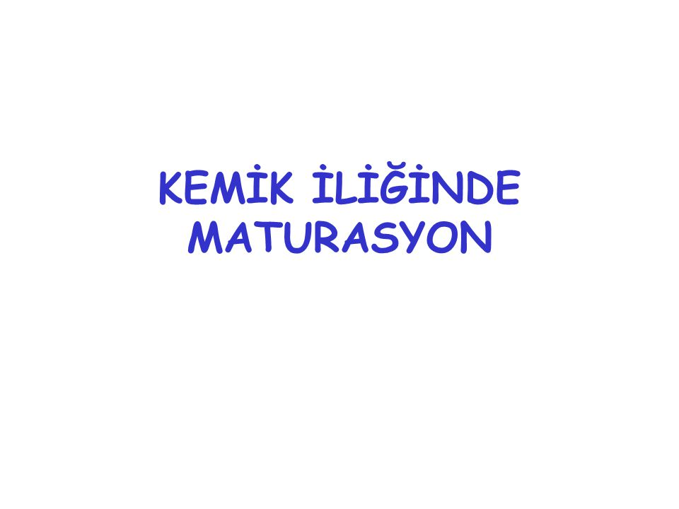 KEMİK İLİĞİNDE MATURASYON