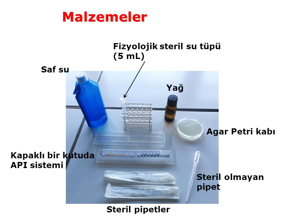 Malzemeler Fizyolojik steril su tüpü (5 mL) Saf su Yağ Agar Petri kabı