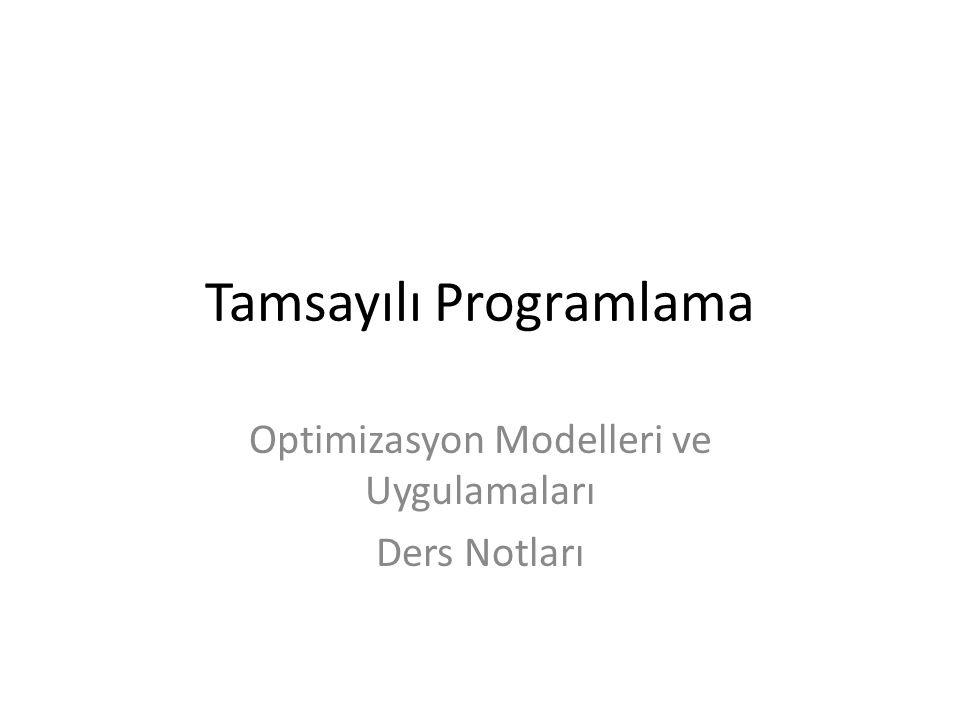 Tamsayılı Programlama