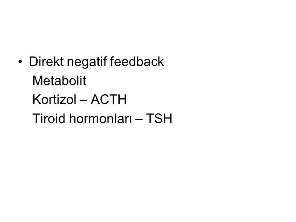 Direkt negatif feedback