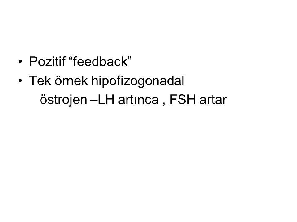 Pozitif feedback Tek örnek hipofizogonadal östrojen –LH artınca , FSH artar