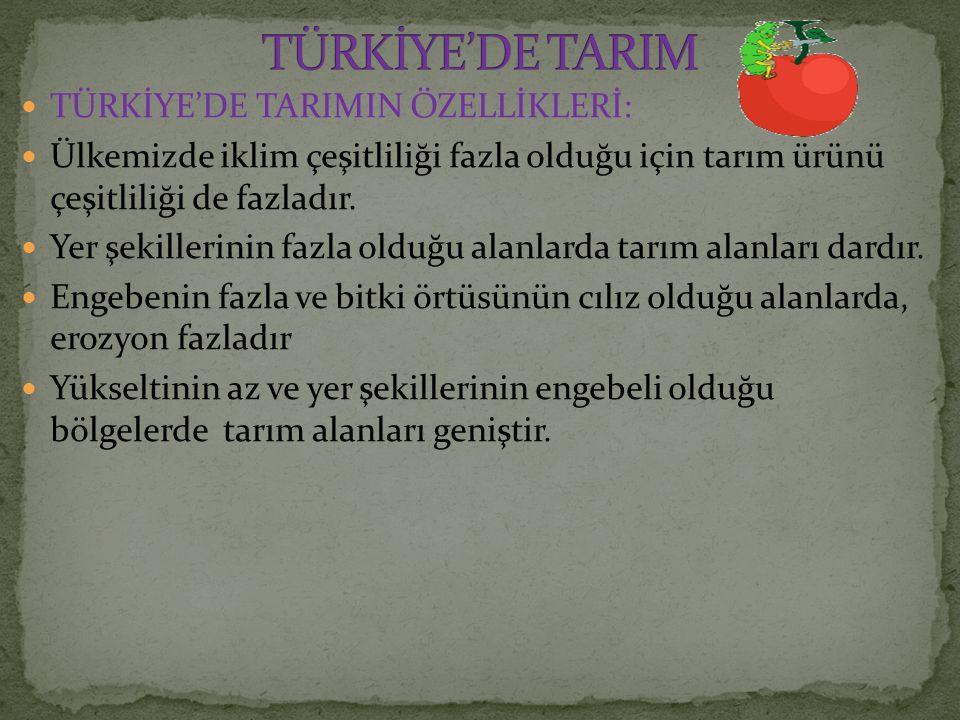 TÜRKİYE'DE TARIM TÜRKİYE'DE TARIMIN ÖZELLİKLERİ: