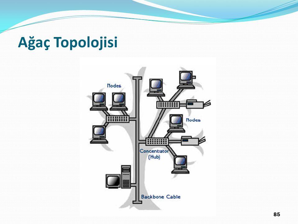 Ağaç Topolojisi 85