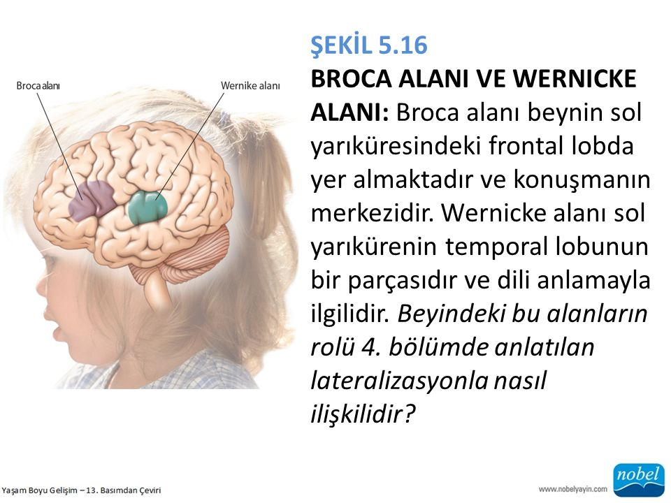 ŞEKİL 5.16