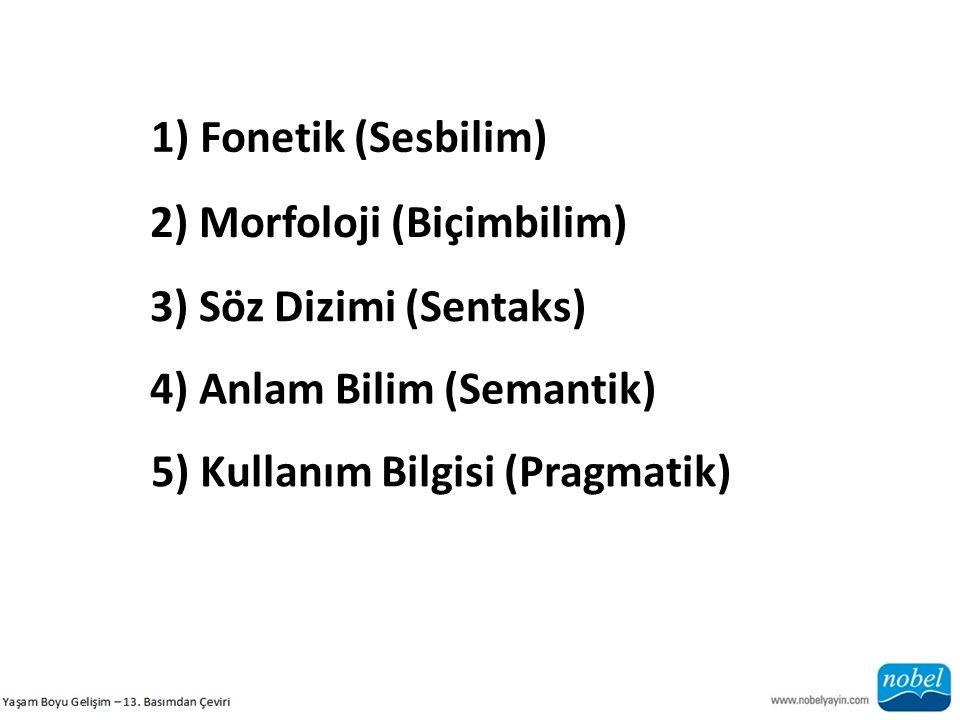 1) Fonetik (Sesbilim) 2) Morfoloji (Biçimbilim) 3) Söz Dizimi (Sentaks) 4) Anlam Bilim (Semantik)