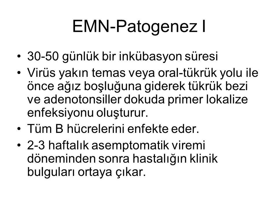 EMN-Patogenez I 30-50 günlük bir inkübasyon süresi