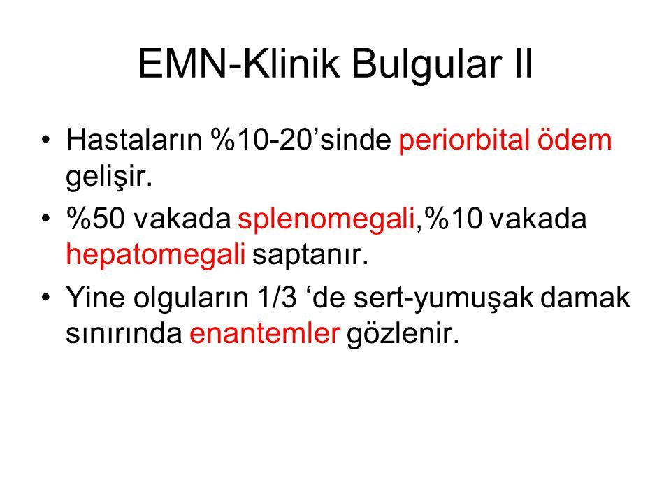 EMN-Klinik Bulgular II