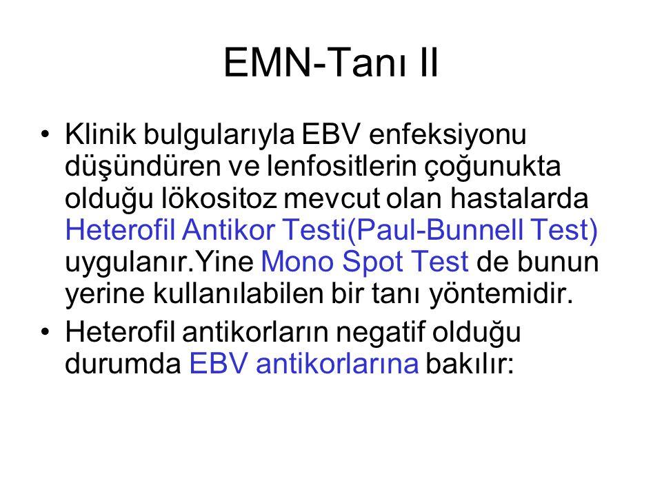 EMN-Tanı II