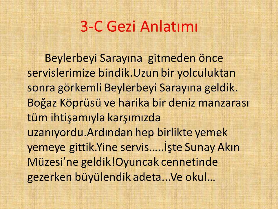 3-C Gezi Anlatımı