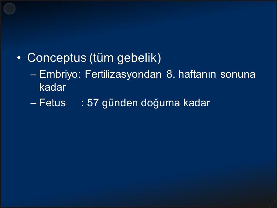 Conceptus (tüm gebelik)