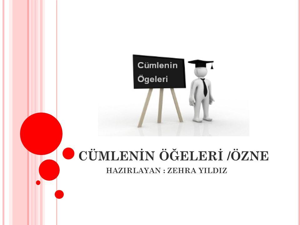 CÜMLENİN ÖĞELERİ /ÖZNE