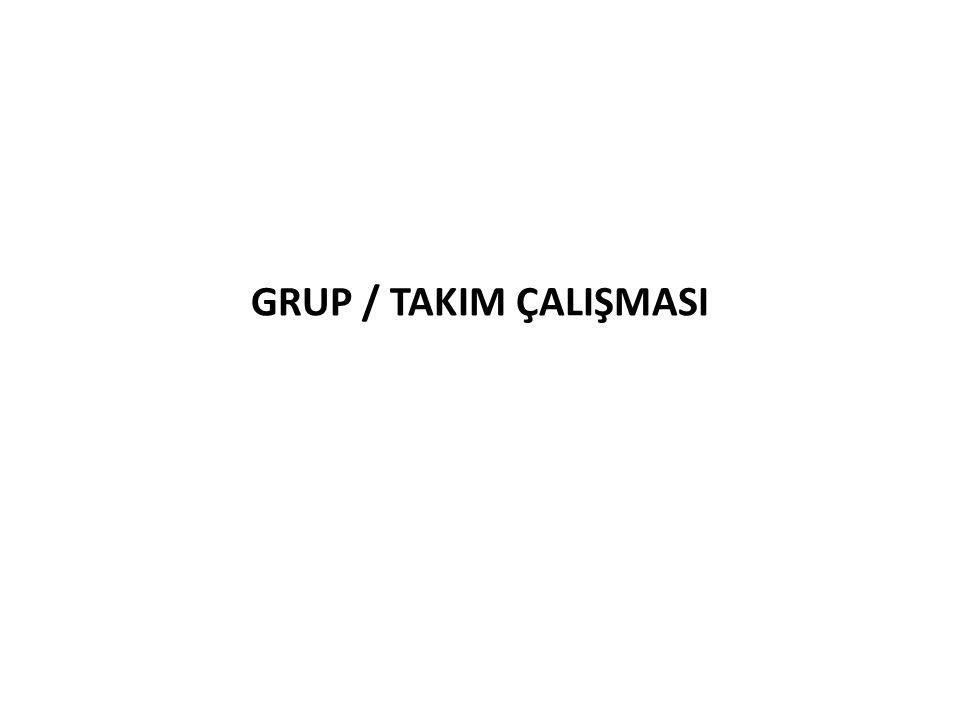 GRUP / TAKIM ÇALIŞMASI