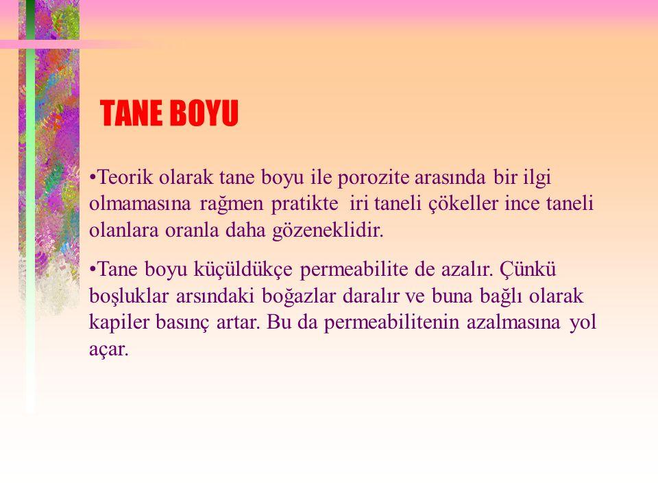 TANE BOYU
