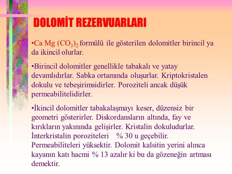 DOLOMİT REZERVUARLARI