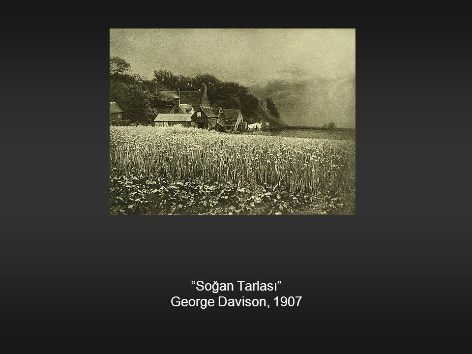 Soğan Tarlası George Davison, 1907