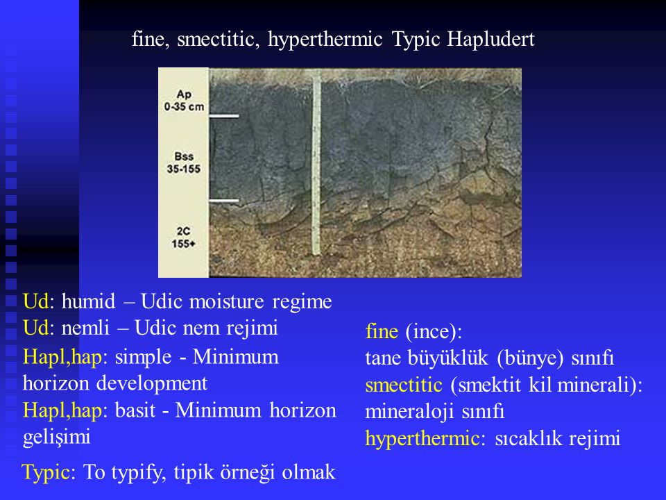 fine, smectitic, hyperthermic Typic Hapludert