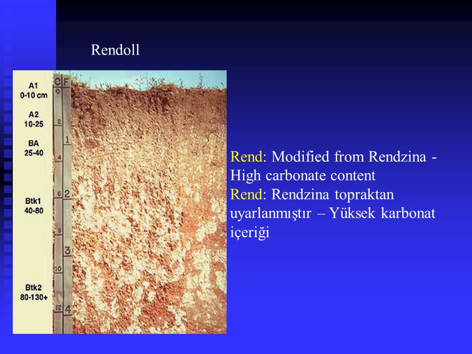 Rendoll Rend: Modified from Rendzina - High carbonate content.
