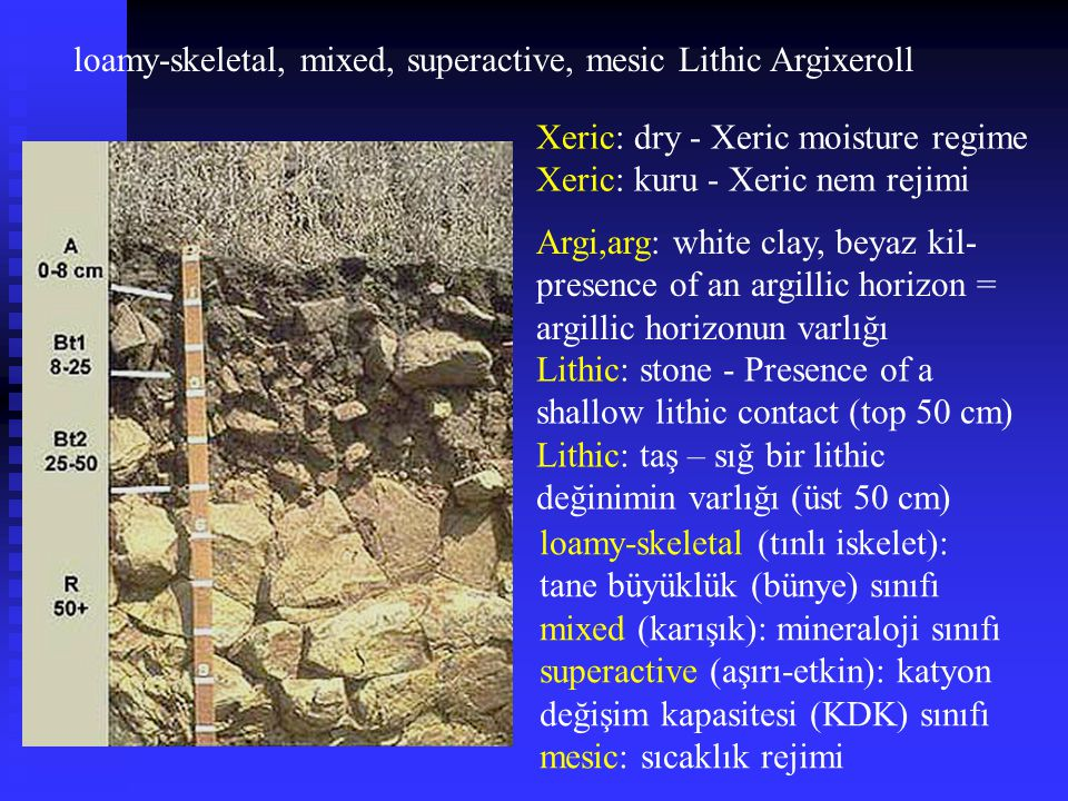 loamy-skeletal, mixed, superactive, mesic Lithic Argixeroll
