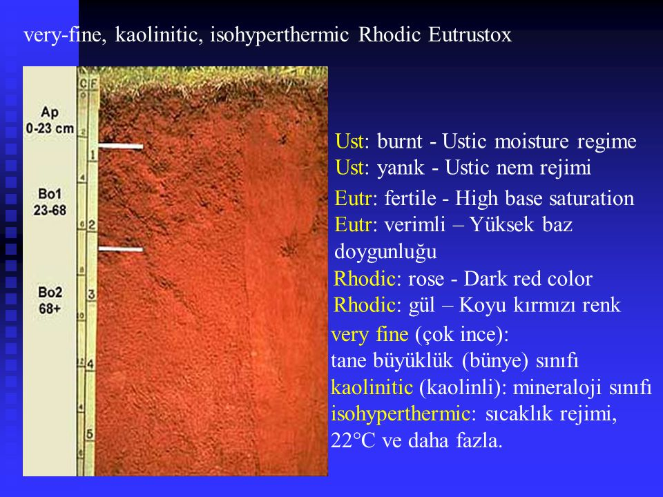 very-fine, kaolinitic, isohyperthermic Rhodic Eutrustox