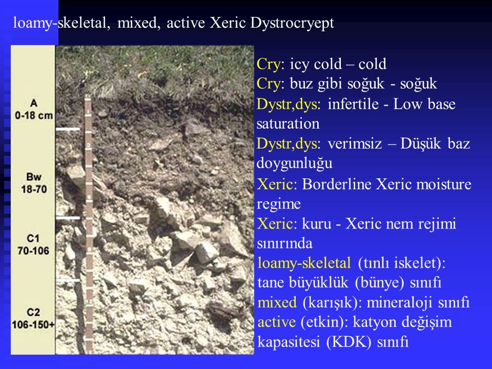 loamy-skeletal, mixed, active Xeric Dystrocryept