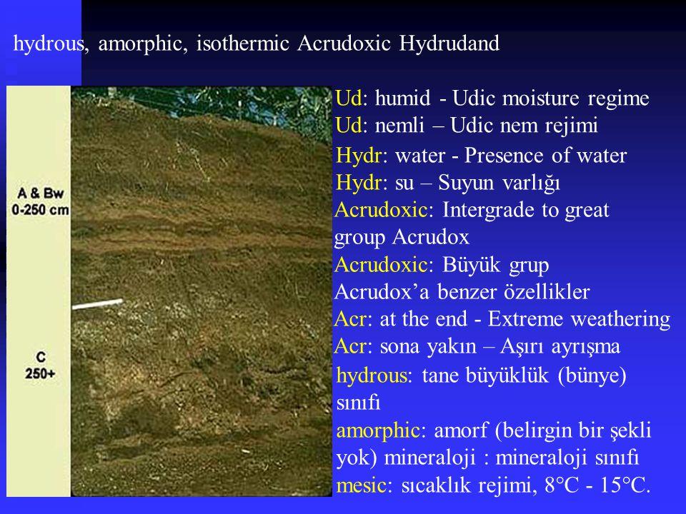 hydrous, amorphic, isothermic Acrudoxic Hydrudand