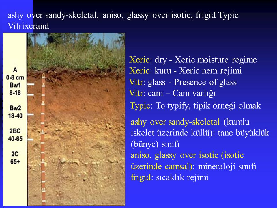 ashy over sandy-skeletal, aniso, glassy over isotic, frigid Typic Vitrixerand