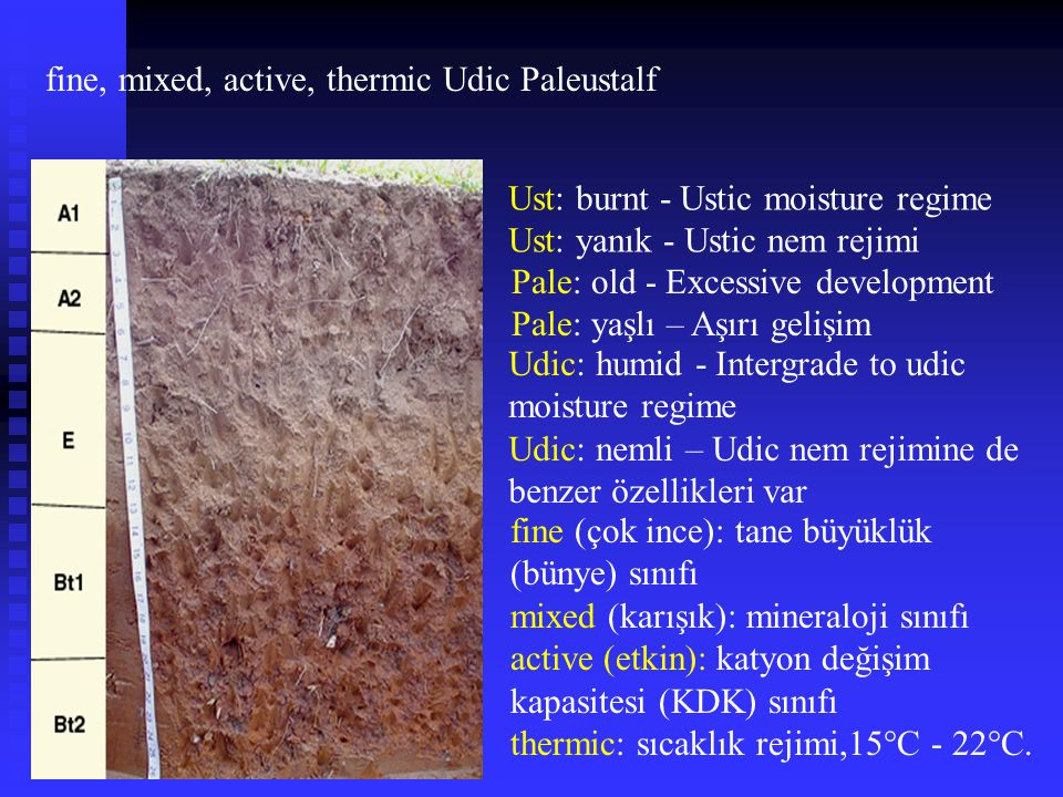 fine, mixed, active, thermic Udic Paleustalf
