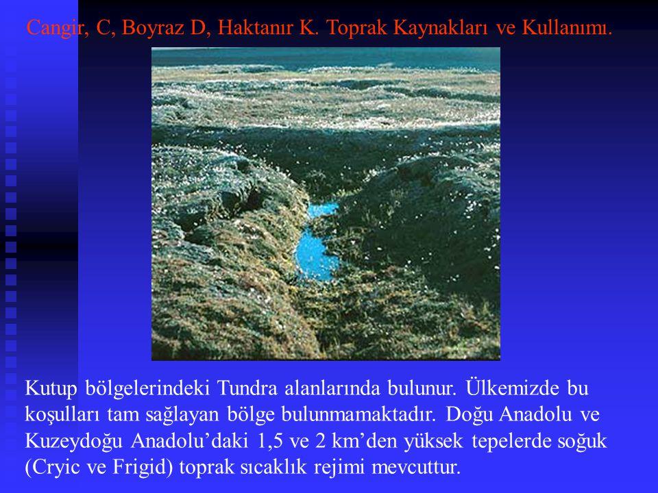 Cangir, C, Boyraz D, Haktanır K. Toprak Kaynakları ve Kullanımı.