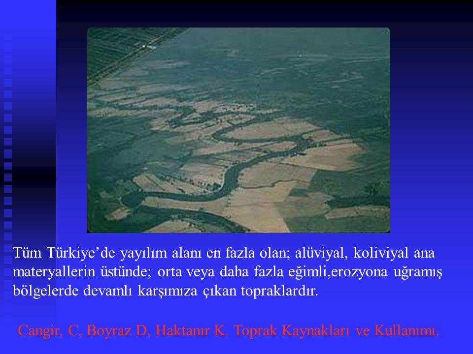 Tüm Türkiye'de yayılım alanı en fazla olan; alüviyal, koliviyal ana materyallerin üstünde; orta veya daha fazla eğimli,erozyona uğramış