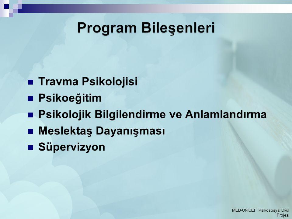 Program Bileşenleri Travma Psikolojisi Psikoeğitim