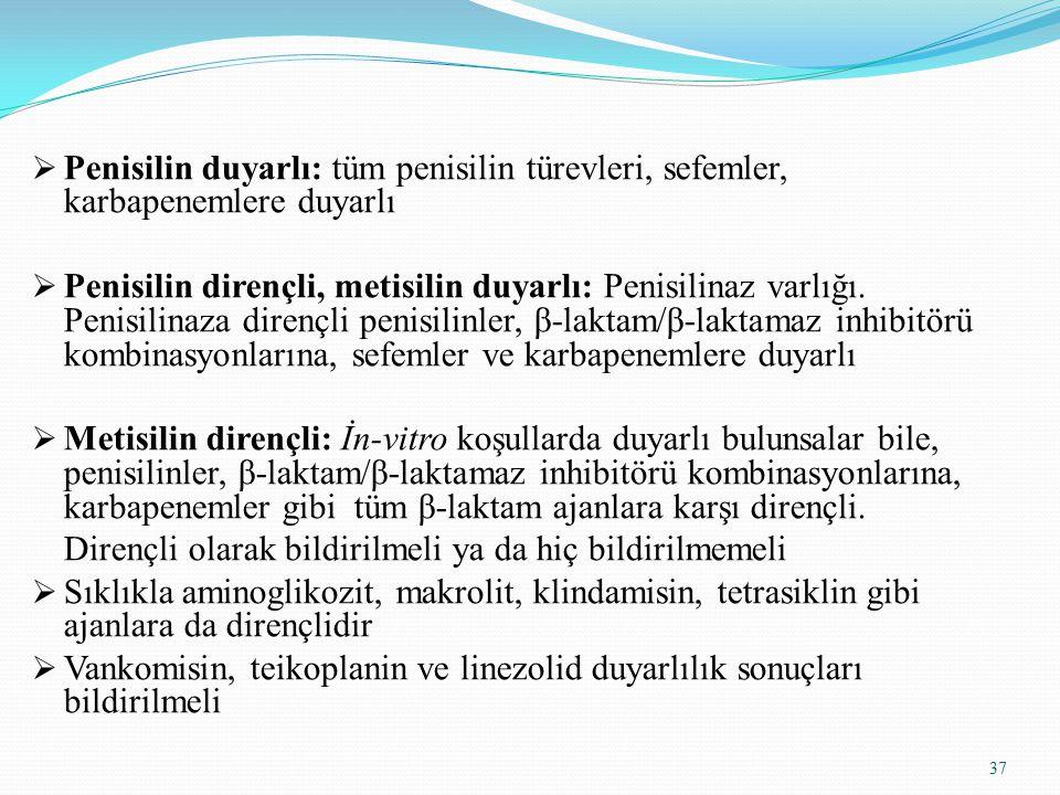 Penisilin duyarlı: tüm penisilin türevleri, sefemler, karbapenemlere duyarlı