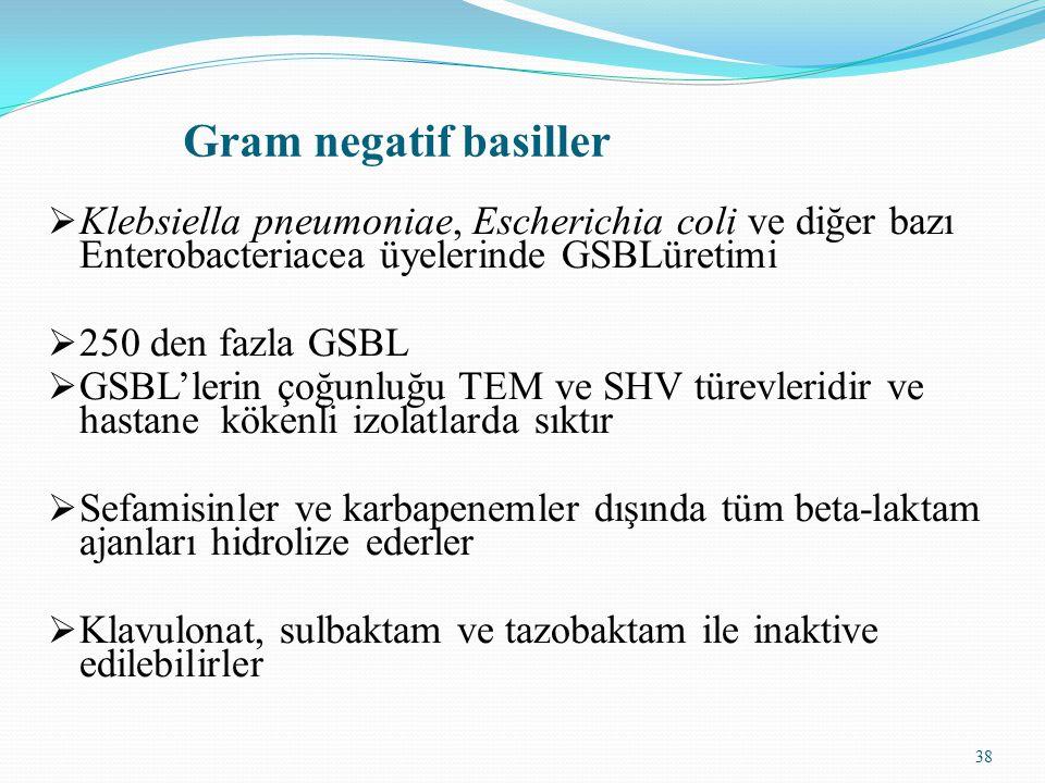 Gram negatif basiller Klebsiella pneumoniae, Escherichia coli ve diğer bazı Enterobacteriacea üyelerinde GSBLüretimi.