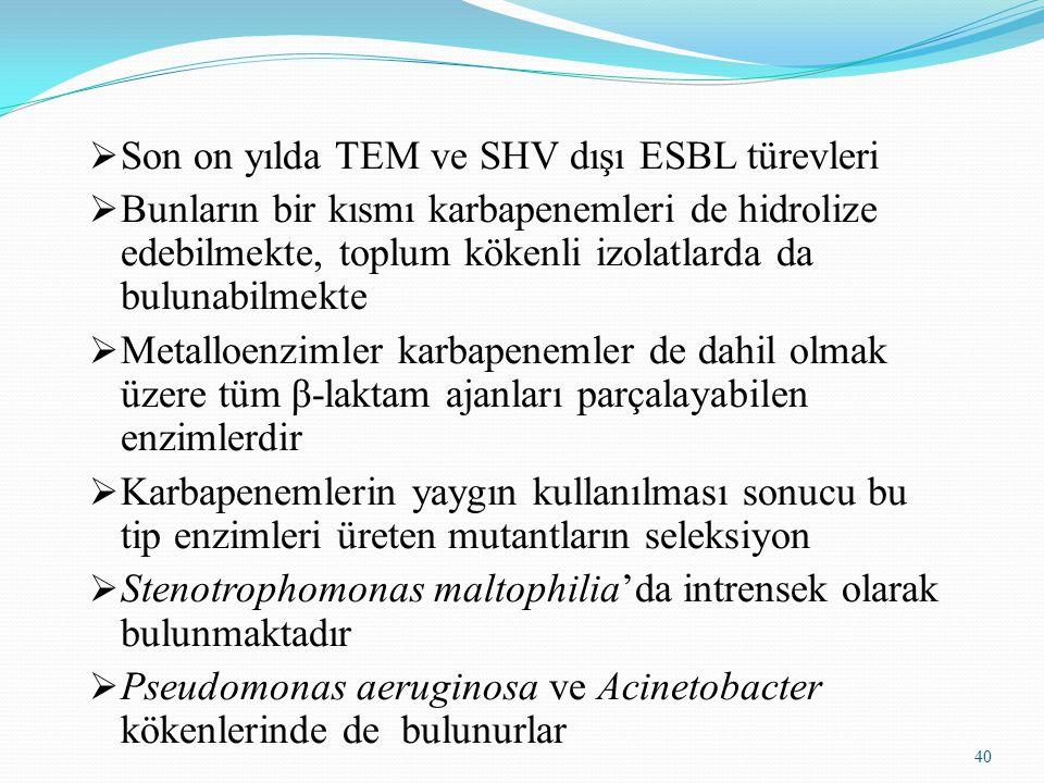 Son on yılda TEM ve SHV dışı ESBL türevleri