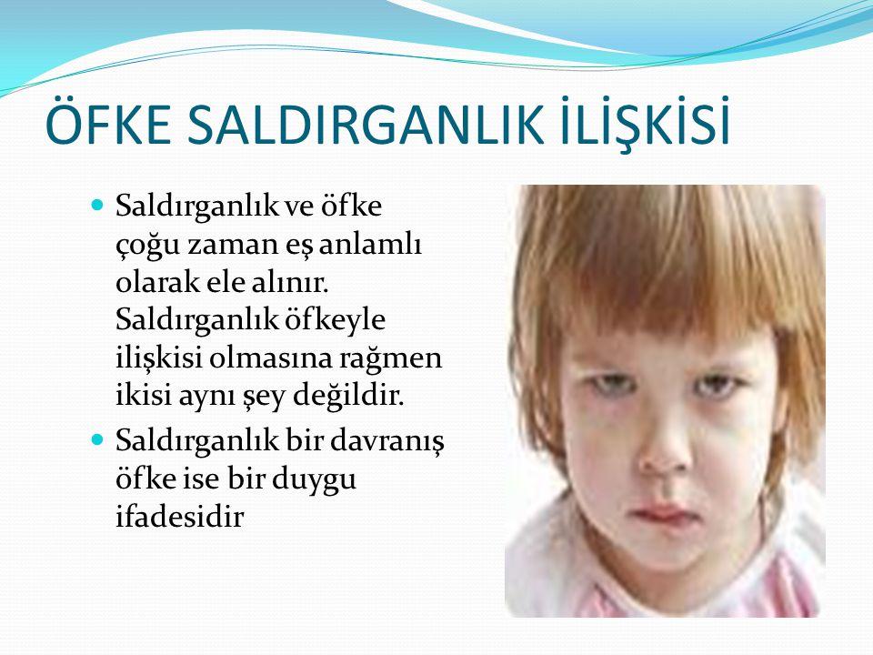 ÖFKE SALDIRGANLIK İLİŞKİSİ