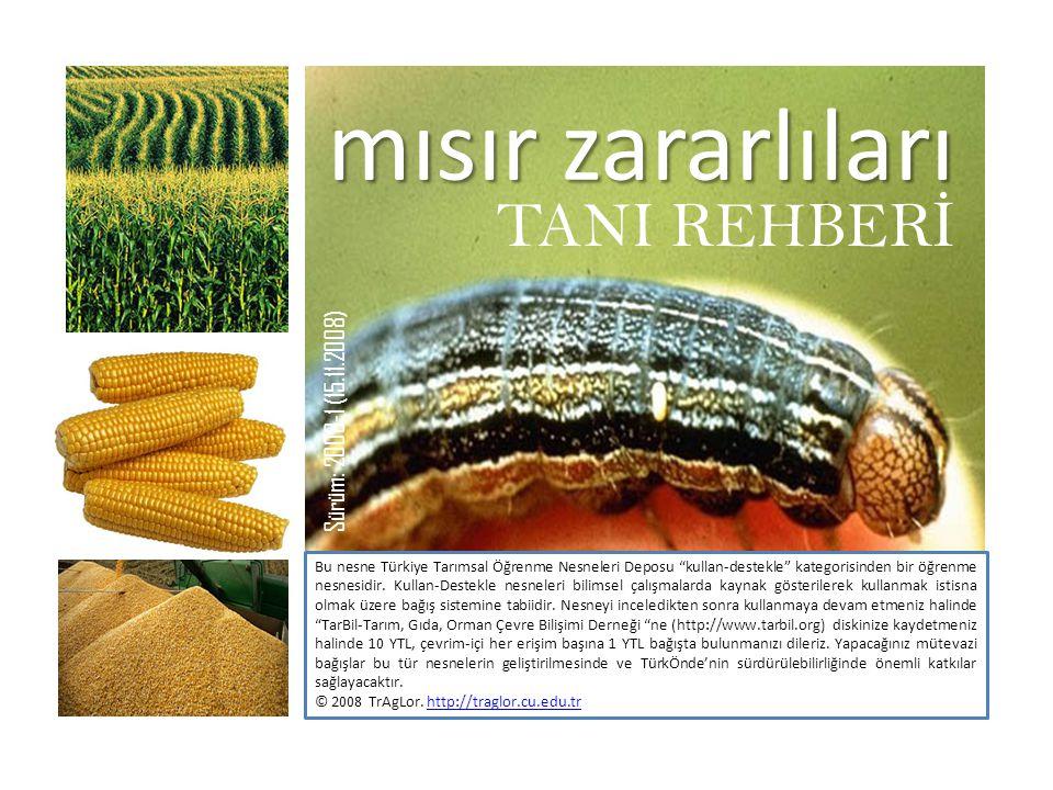 mısır zararlıları TANI REHBERİ Sürüm: 2008-1 (15.11.2008)