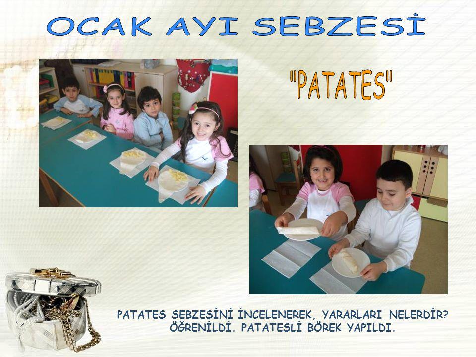 OCAK AYI SEBZESİ PATATES