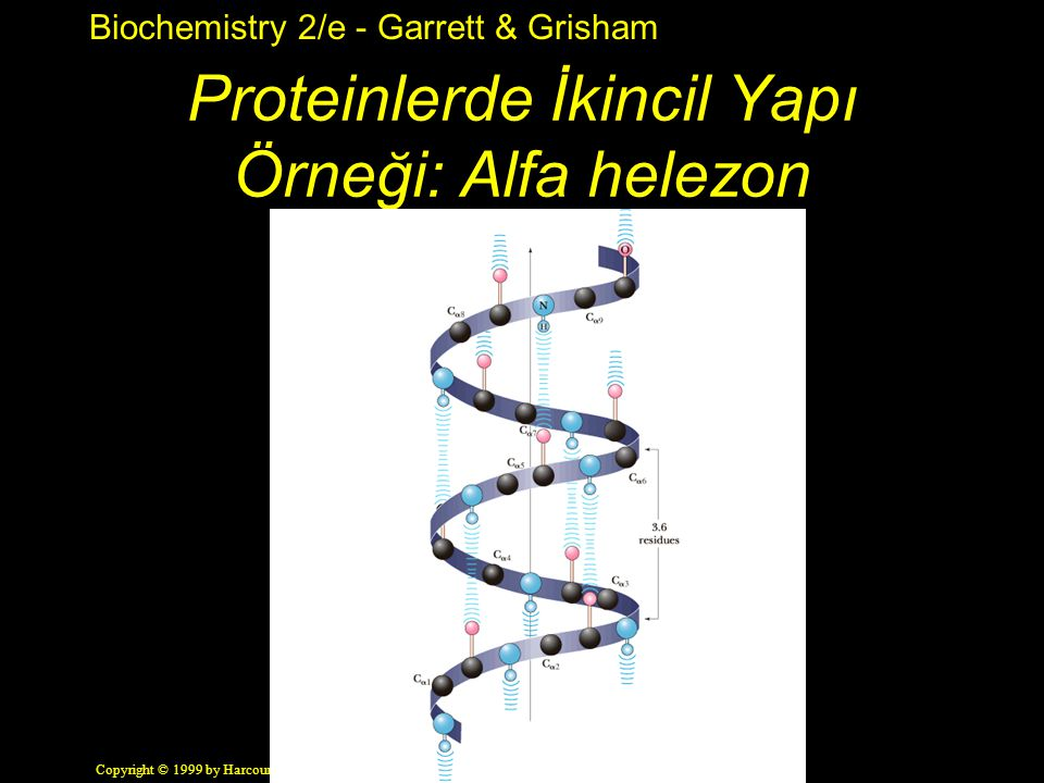 Proteinlerde İkincil Yapı Örneği: Alfa helezon