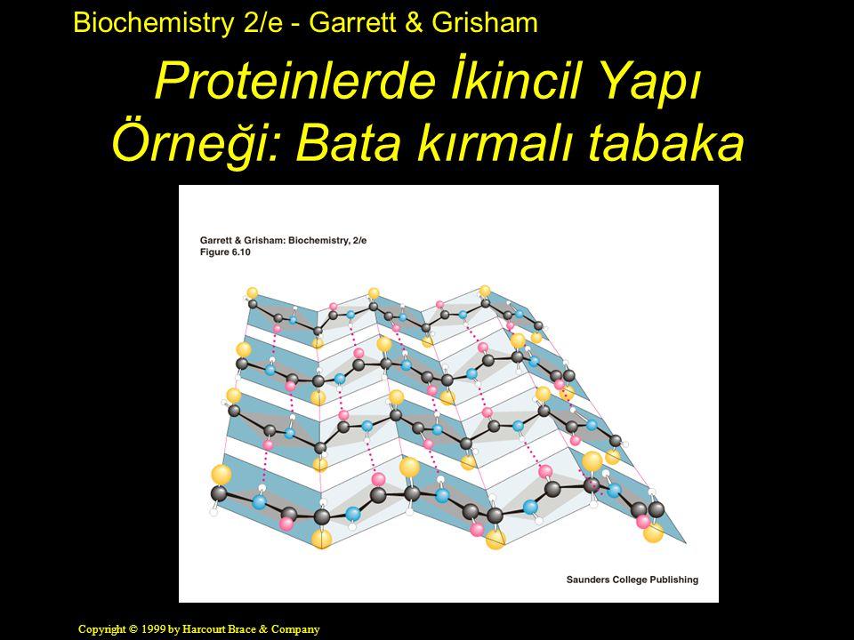 Proteinlerde İkincil Yapı Örneği: Bata kırmalı tabaka