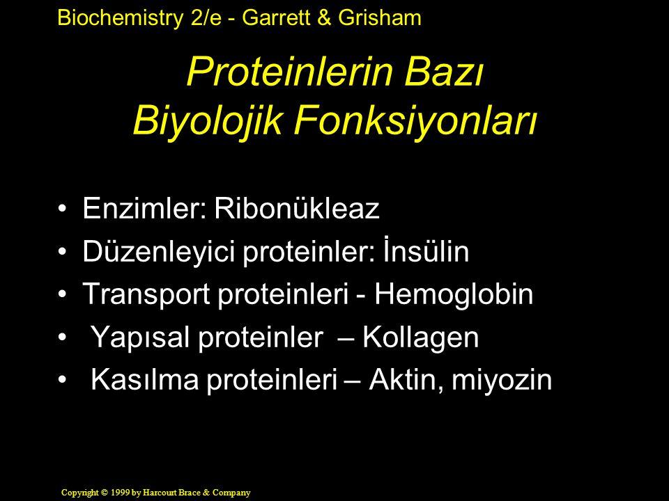 Proteinlerin Bazı Biyolojik Fonksiyonları