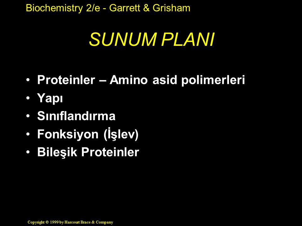 SUNUM PLANI Proteinler – Amino asid polimerleri Yapı Sınıflandırma