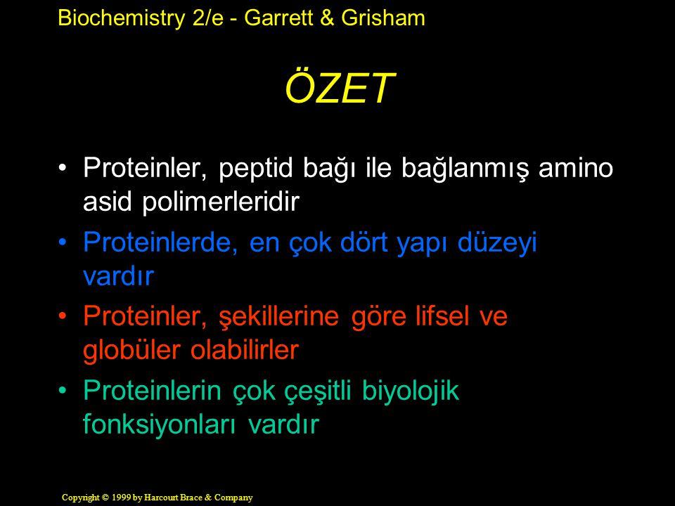 ÖZET Proteinler, peptid bağı ile bağlanmış amino asid polimerleridir