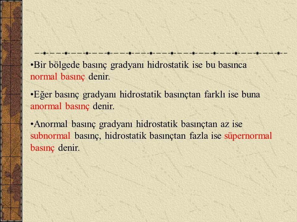 Bir bölgede basınç gradyanı hidrostatik ise bu basınca normal basınç denir.